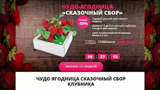 Как заказать Чудо ягодница клубника в домашних условиях